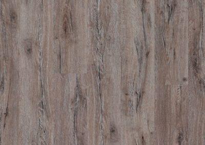 Royal Gorge Oak
