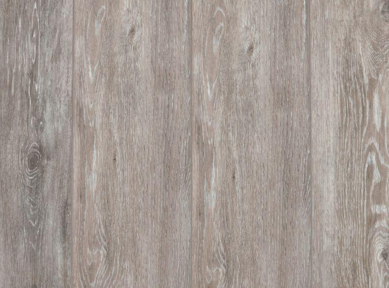 XLellis oak 954